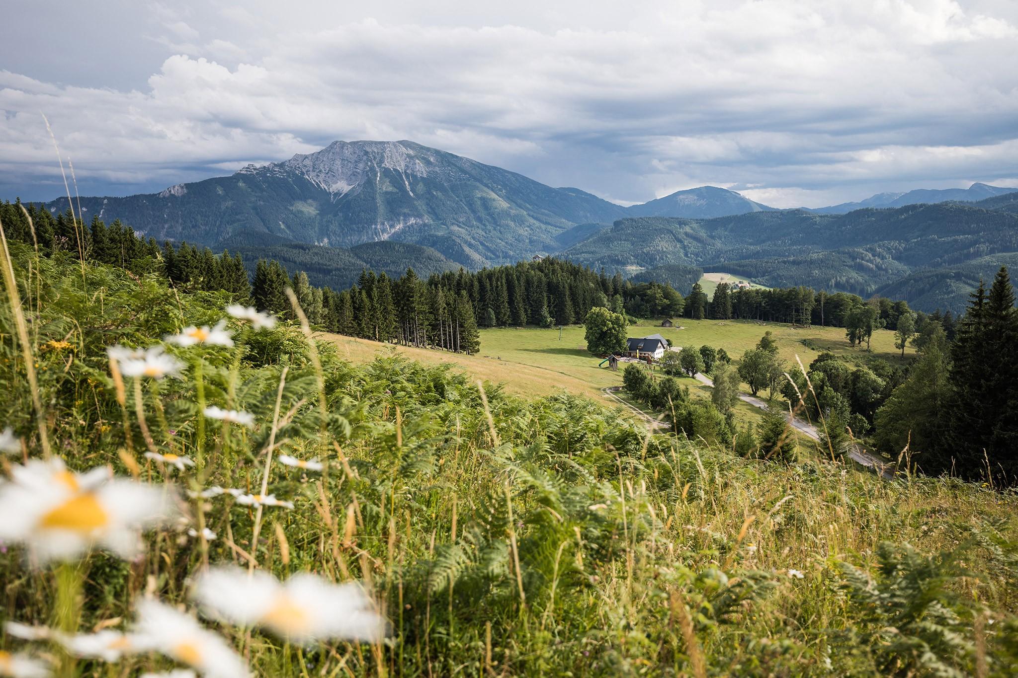 Ötscher szurdok- hegyek és vízesések vidéke