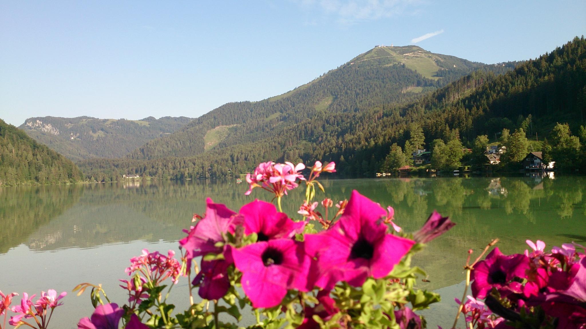 Túrázás Ausztria zöld szívében nyáron