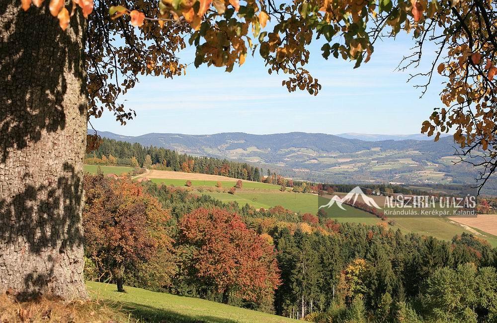 Naturpark_Poellauer_Tal